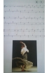 Flamenco to tap. Sheet Music